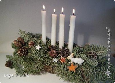 Рождественская флористика фото 8