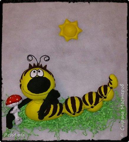 Здравствуйте! На дворе зима, а я к вам с гусеницей ;) Вообще-то я не люблю гусениц, червяков, слизней разных, но именно эту свою люблю всей душой! фото 1