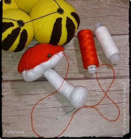 Здравствуйте! На дворе зима, а я к вам с гусеницей ;) Вообще-то я не люблю гусениц, червяков, слизней разных, но именно эту свою люблю всей душой! фото 6