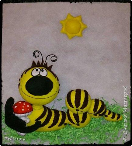 Здравствуйте! На дворе зима, а я к вам с гусеницей ;) Вообще-то я не люблю гусениц, червяков, слизней разных, но именно эту свою люблю всей душой! фото 8
