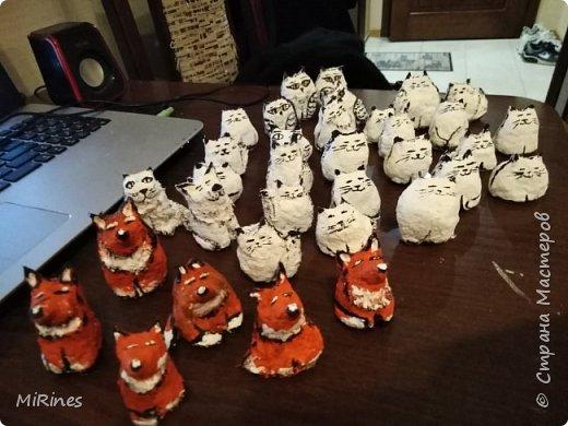 Коты и лисы. фото 3
