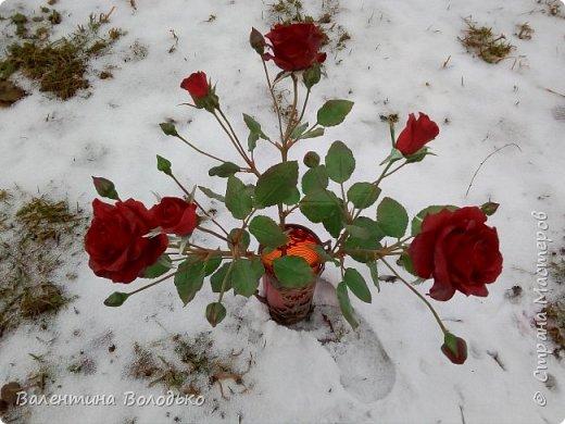 Добрый день мастера и мастерицы!!!Слепила розы,а вот фото сделать не могу,цвет не передается.Солнышка нет,я уже и на снегу попыталась поймать цвет,но все не так.Однако впереди Новый год,пускай будут зимние розы!!! фото 2