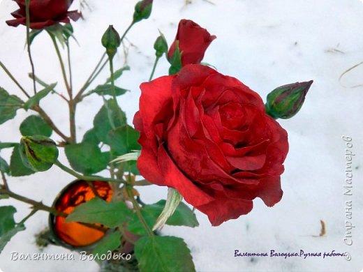 Добрый день мастера и мастерицы!!!Слепила розы,а вот фото сделать не могу,цвет не передается.Солнышка нет,я уже и на снегу попыталась поймать цвет,но все не так.Однако впереди Новый год,пускай будут зимние розы!!! фото 6