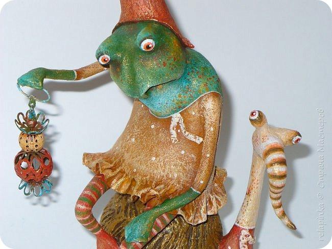 Лягушка фото 5