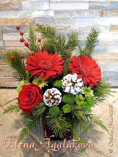 Добрый день! С наступающим Новым годом и Рождеством! Сегодня я к вам снова с композициями из живых цветов, на этот раз новогодними.  Этим летом я решила осуществить еще одну свою мечту - научится цветочному дизайну. Очень люблю цветы, травки-муравки, деревья и вообще все растения. Очень увлекательно работать с цветами! Я взяла небольшой курс по цветочному дизайну. Дома делаю оранжировки из того что под рукой, беру цветы которые найду, даже полевые и из своего садика. Конечно сейчас все цветы в садике отцвели... поэтому приношу из магазина где работаю. Другие композиции делала для цветочного магазина где начала работать. Делюсь красотой! фото 5