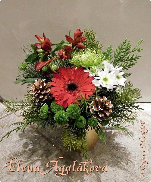 Добрый день! С наступающим Новым годом и Рождеством! Сегодня я к вам снова с композициями из живых цветов, на этот раз новогодними.  Этим летом я решила осуществить еще одну свою мечту - научится цветочному дизайну. Очень люблю цветы, травки-муравки, деревья и вообще все растения. Очень увлекательно работать с цветами! Я взяла небольшой курс по цветочному дизайну. Дома делаю оранжировки из того что под рукой, беру цветы которые найду, даже полевые и из своего садика. Конечно сейчас все цветы в садике отцвели... поэтому приношу из магазина где работаю. Другие композиции делала для цветочного магазина где начала работать. Делюсь красотой! фото 11