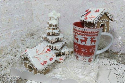 Доброго всем дня! С Наступающим Новым годом!! Мои первые пряничные домики,объёмная ёлочка..не все получилось как хотелось.. Но надеюсь мой подарок детям понравится..