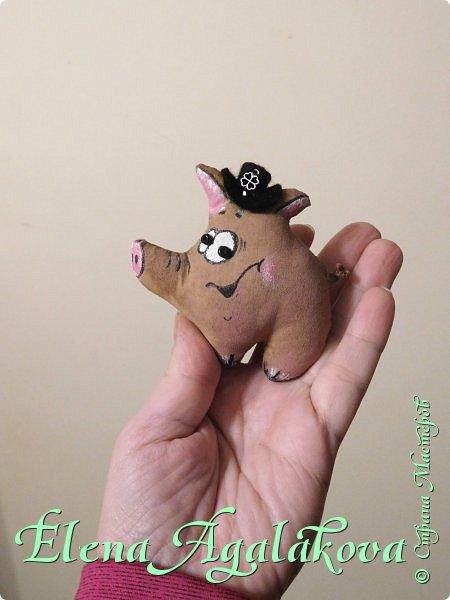 Всех с наступающим Новым годом и Рождеством!!! Счастья, Здоровья, Благополучия!!! Успела сделать как раз к Новому году кофейных свинок! Все получились со своим характером, как раз достаточно на подарки друзьям . Сшила две сладких парочки, другие по одному.  На шапочках листики клевера на счастье. фото 3