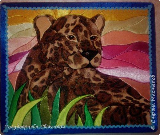 Леопард отдыхает фото 1