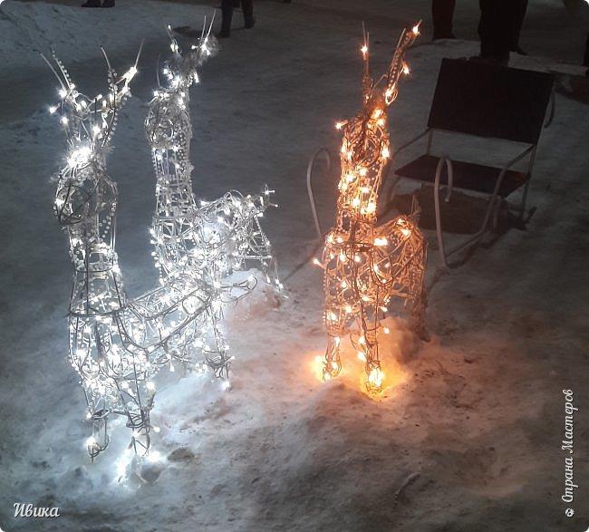 Всех-всех, кто зашёл в гости ко мне на страничку, поздравляю с Новым годом! Желаю всем здоровья, добра, благополучия и мира! Новый год мы встречали у детей в г.Черкассы (Украина). Праздничные дни выдались морозные и снежные. Все съёмки велись, так сказать, по ходу движения. Это одна из городских ёлок. На одной из площадей города.  фото 10