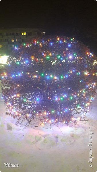 Всех-всех, кто зашёл в гости ко мне на страничку, поздравляю с Новым годом! Желаю всем здоровья, добра, благополучия и мира! Новый год мы встречали у детей в г.Черкассы (Украина). Праздничные дни выдались морозные и снежные. Все съёмки велись, так сказать, по ходу движения. Это одна из городских ёлок. На одной из площадей города.  фото 13