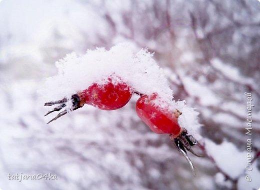 говорят  зимой морозно,холодно,,Но насколько красивая природа,,,Иногда не замечаешь и минуса на улице фото 6