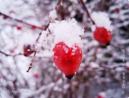 говорят  зимой морозно,холодно,,Но насколько красивая природа,,,Иногда не замечаешь и минуса на улице фото 7