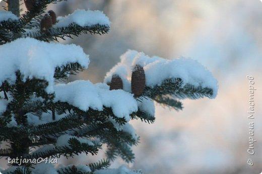 говорят  зимой морозно,холодно,,Но насколько красивая природа,,,Иногда не замечаешь и минуса на улице фото 30