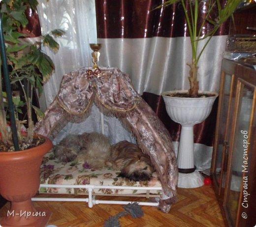 Страна, доброе время суток тебе, твоим жителям и гостям! Делюсь идеей! Любая собака любит иметь своё логово, свою будку ...свое собачье место. У моих шитцулек появился такой шатёр. И они с удовольствием им пользуются. фото 1