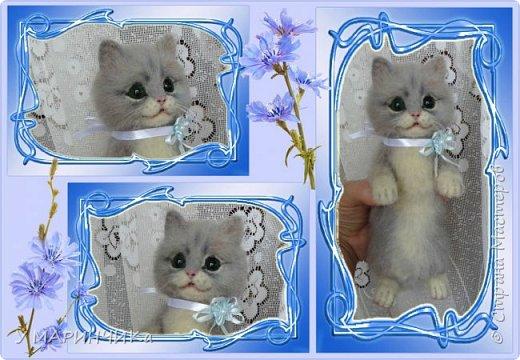 Котейка с подарком фото 3