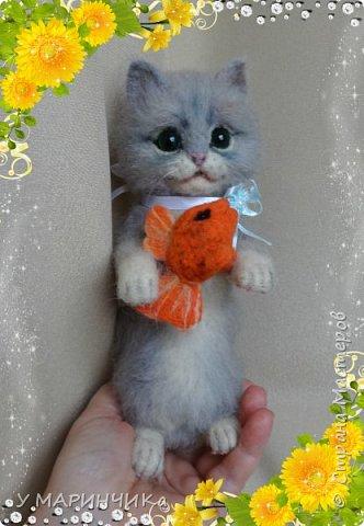 Котейка с подарком фото 4