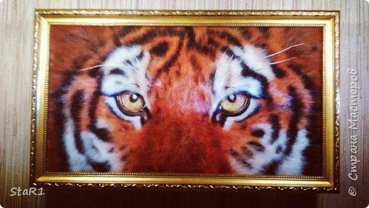 Тигр ...работа не окончена на 1- 2 фото . 3 является завершением. фото 3