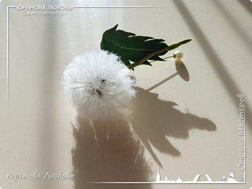 Одуванчик. Авторская валяная брошь на каркасе.  Шерсть, пряди вискозы. фото 4