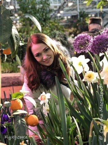 """Стоял обычный февральский, слегка морозный денек - 23 февраля) А в самом сердце Москвы, в Ботаническом саду МГУ, открылась выставка """" Репетиция весны"""" И, конечно же, захотелось насладиться этими красками, запахами, цветом! Поехала прям к открытию) Благо в очереди пришлось стоять минут 10 всего. Еще и первым 313 посетителям (число не простое - 313 лет в этом году Аптекарскому огороду) в подарок - тюльпан)  Насладитесь кусочком долгожданной весны! фото 23"""