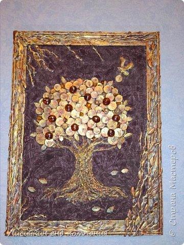 Денежные деревья фото 2
