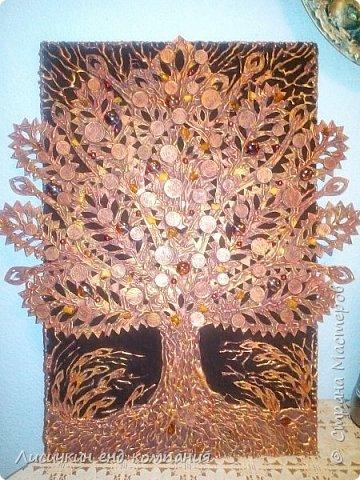 Денежные деревья фото 4
