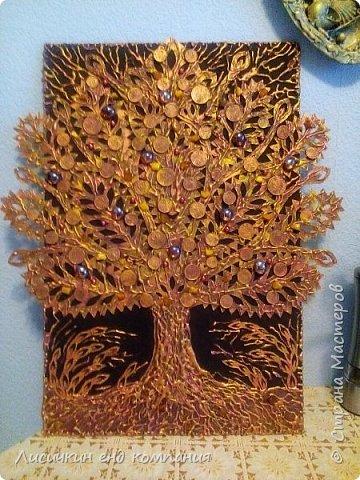 Денежные деревья фото 5