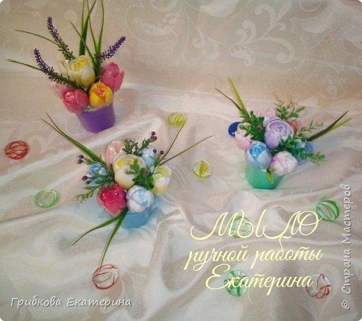Тюльпаны в горшочках