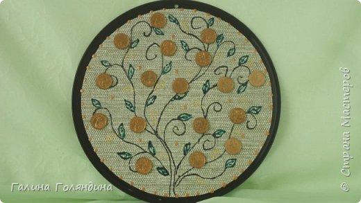 Денежное деревце . фото 1