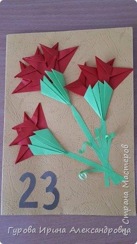 Гвоздики для плаката фото 4