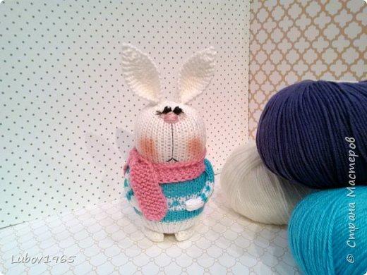 Амигуруми.Заяц спицами. Игрушки для детей.Коллекция. фото 4