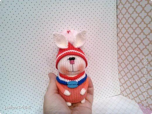 Амигуруми.Заяц спицами. Игрушки для детей.Коллекция. фото 3