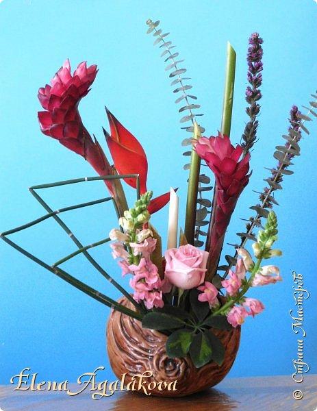 Добрый день! Сегодня я к вам снова с Весенними композициями из цветов. Весна пришла и особенно хочется цветов и красок! Прошлым летом я решила осуществить еще одну свою мечту - научится цветочному дизайну. Очень люблю цветы, травки-муравки, деревья и вообще все растения. Очень увлекательно работать с цветами! Я взяла небольшой курс по цветочному дизайну. Дома делаю оранжировки из того что под рукой, беру цветы которые найду, даже полевые и из своего садика. Конечно сейчас цветов в садике нет, но есть разные веточки, травинки... использую цветы из цветочного магазина где работаю. Делюсь красотой! фото 19