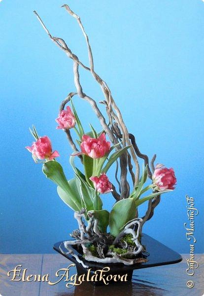 Добрый день! Сегодня я к вам снова с Весенними композициями из цветов. Весна пришла и особенно хочется цветов и красок! Прошлым летом я решила осуществить еще одну свою мечту - научится цветочному дизайну. Очень люблю цветы, травки-муравки, деревья и вообще все растения. Очень увлекательно работать с цветами! Я взяла небольшой курс по цветочному дизайну. Дома делаю оранжировки из того что под рукой, беру цветы которые найду, даже полевые и из своего садика. Конечно сейчас цветов в садике нет, но есть разные веточки, травинки... использую цветы из цветочного магазина где работаю. Делюсь красотой! фото 17