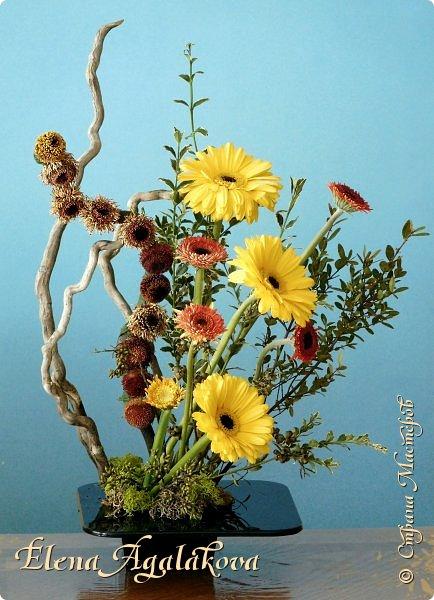 Добрый день! Сегодня я к вам снова с Весенними композициями из цветов. Весна пришла и особенно хочется цветов и красок! Прошлым летом я решила осуществить еще одну свою мечту - научится цветочному дизайну. Очень люблю цветы, травки-муравки, деревья и вообще все растения. Очень увлекательно работать с цветами! Я взяла небольшой курс по цветочному дизайну. Дома делаю оранжировки из того что под рукой, беру цветы которые найду, даже полевые и из своего садика. Конечно сейчас цветов в садике нет, но есть разные веточки, травинки... использую цветы из цветочного магазина где работаю. Делюсь красотой! фото 5