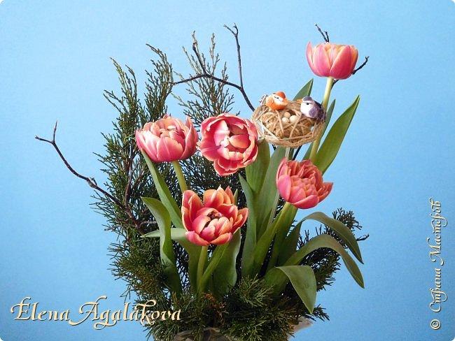 Добрый день! Сегодня я к вам снова с Весенними композициями из цветов. Весна пришла и особенно хочется цветов и красок! Прошлым летом я решила осуществить еще одну свою мечту - научится цветочному дизайну. Очень люблю цветы, травки-муравки, деревья и вообще все растения. Очень увлекательно работать с цветами! Я взяла небольшой курс по цветочному дизайну. Дома делаю оранжировки из того что под рукой, беру цветы которые найду, даже полевые и из своего садика. Конечно сейчас цветов в садике нет, но есть разные веточки, травинки... использую цветы из цветочного магазина где работаю. Делюсь красотой! фото 7