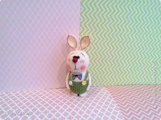 Красноносый заяц фото 2