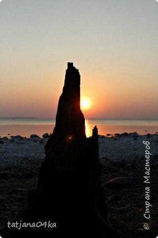 Хочется поделиться очередной порцией фотографий ,,,вчерашняя прогулка по морю,,,И этот фоторепортаж о том, каким выглядим пляж Балтийского моря,,в одном месте он может быть песчаным ,а в другом прямо утопает в булыжниках,,, фото 2
