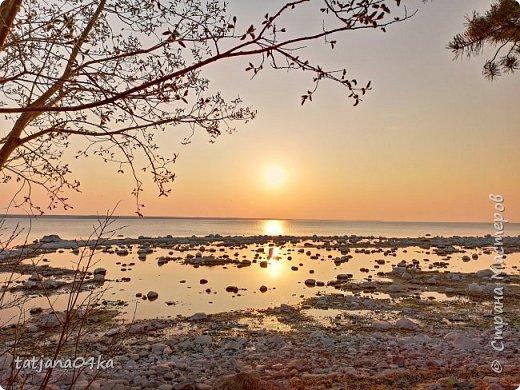 Хочется поделиться очередной порцией фотографий ,,,вчерашняя прогулка по морю,,,И этот фоторепортаж о том, каким выглядим пляж Балтийского моря,,в одном месте он может быть песчаным ,а в другом прямо утопает в булыжниках,,, фото 16