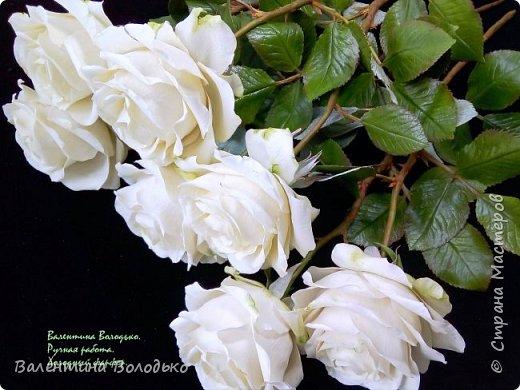 Доброе утро мастера и мастерицы.Впервые лепила белые розы по заказу дорого для меня человека,надеюсь ,что понравиться. фото 1