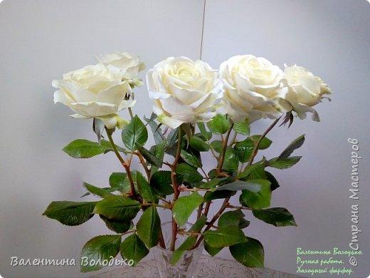 Доброе утро мастера и мастерицы.Впервые лепила белые розы по заказу дорого для меня человека,надеюсь ,что понравиться. фото 3