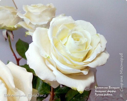 Доброе утро мастера и мастерицы.Впервые лепила белые розы по заказу дорого для меня человека,надеюсь ,что понравиться. фото 5