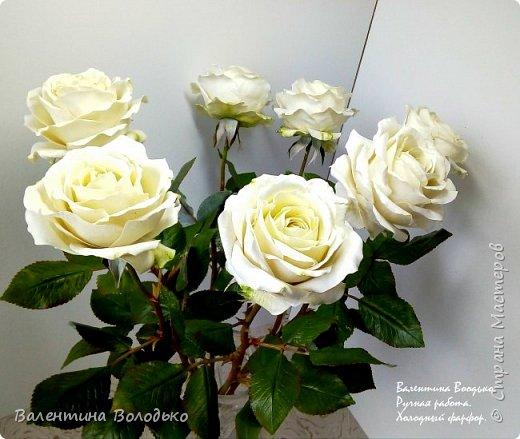 Доброе утро мастера и мастерицы.Впервые лепила белые розы по заказу дорого для меня человека,надеюсь ,что понравиться. фото 6