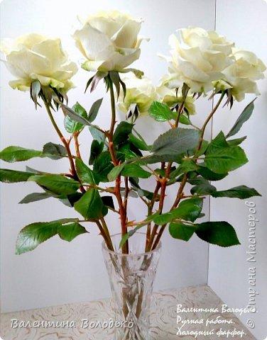 Доброе утро мастера и мастерицы.Впервые лепила белые розы по заказу дорого для меня человека,надеюсь ,что понравиться. фото 7