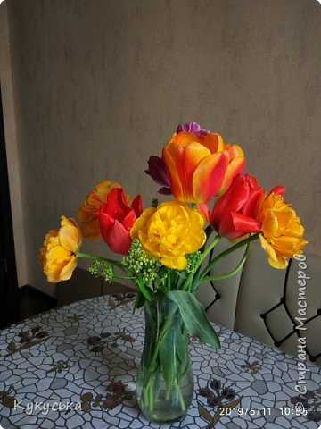 Наступила долгожданная весенняя пора. Раскрыли солнышку свои объятия тюльпаны! фото 26