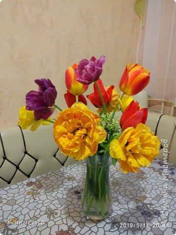 Наступила долгожданная весенняя пора. Раскрыли солнышку свои объятия тюльпаны!