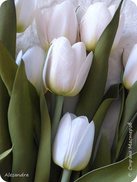 Тюльпаны для Анны фото 2