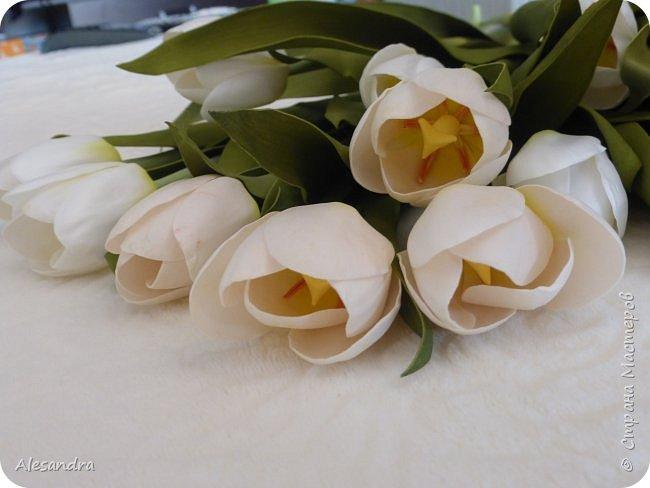Тюльпаны для Анны фото 5