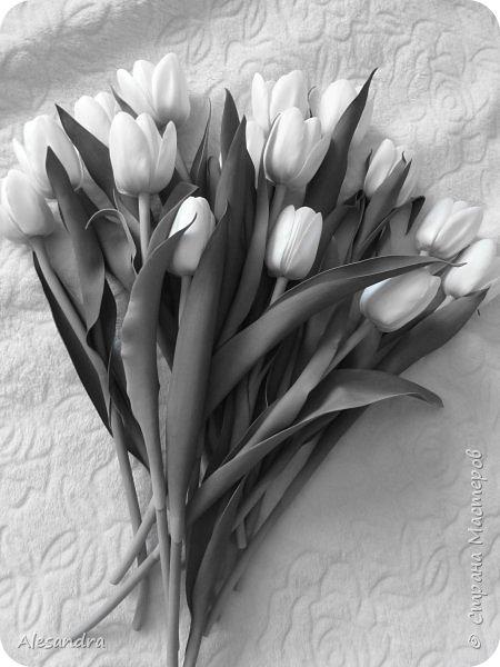 Тюльпаны для Анны фото 8
