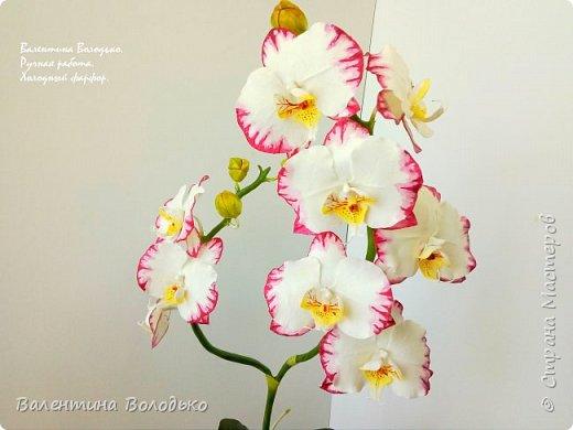 Добрый день мастера и мастерицы!!!Очередная попытка отразить в глине трепетную красоту роз!!! фото 6